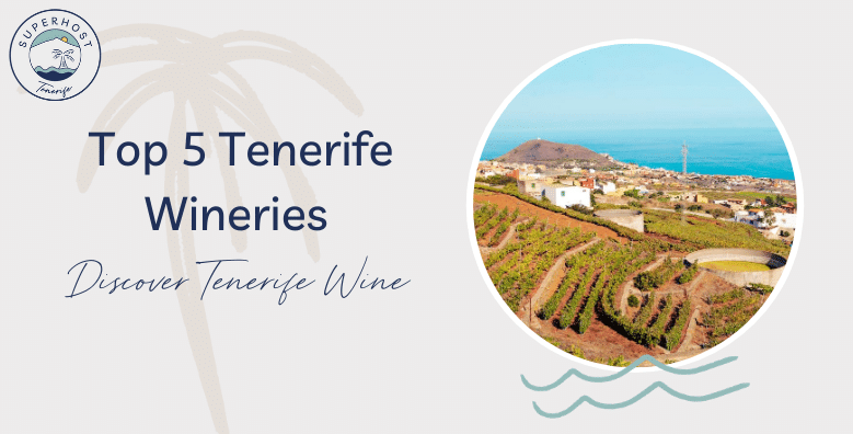Top 5 Tenerife Wineries